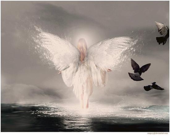 Ange Femme images anges